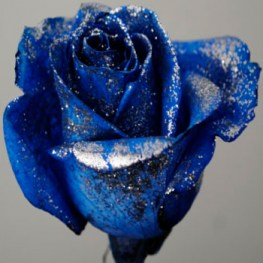 blue_silver_glitter_dyed_rose